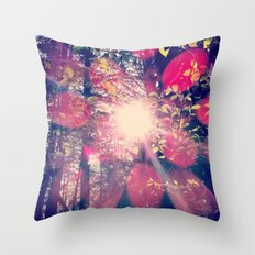 Colour Of Truth  Throw Pillow