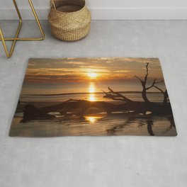 Sunrise with Driftwood Rug