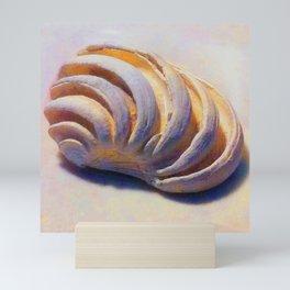 Imperial Venus Sea Shell Mini Art Print
