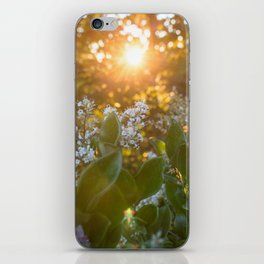 Sunset through the flowers iPhone Skin