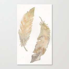 Feather Study in Brown Canvas Print