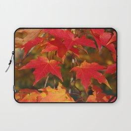 Fiery Autumn Maple Leaves 4966 Laptop Sleeve