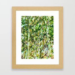 Picture of green bamboo forest Framed Art Print