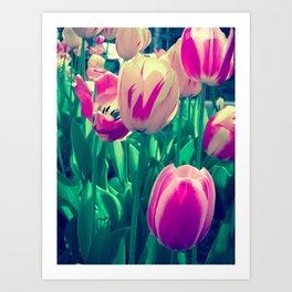 Flowers in Bloom Art Print