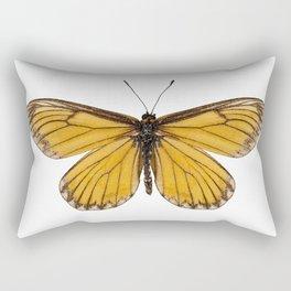 "Butterfly species Acraea issoria ""Yellow Coster"" Rectangular Pillow"