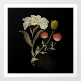 Dark flowers Art Print