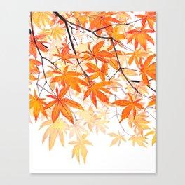 orange maple leaves watercolor Canvas Print
