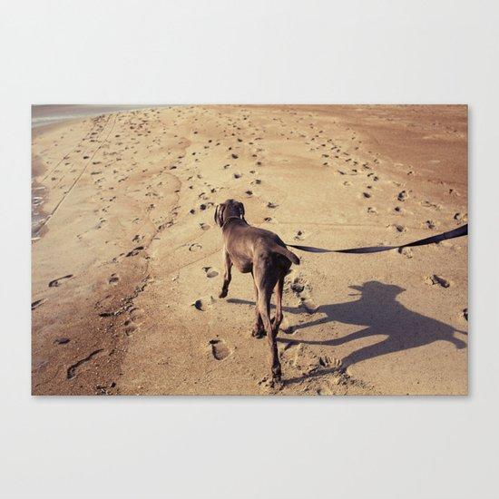 beachdog Canvas Print