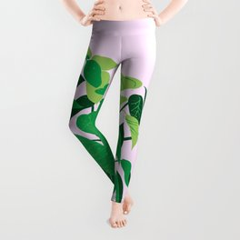 ficus on pink background Leggings