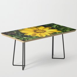 Is It Summer Yet? Coffee Table
