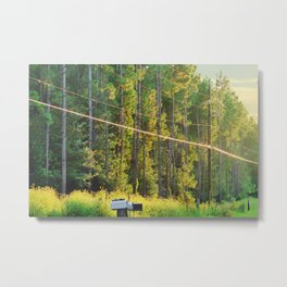 A Brighter Day Metal Print