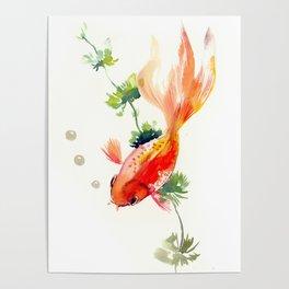 Goldfish, aquarium fish art, design watercolor fish painting Poster