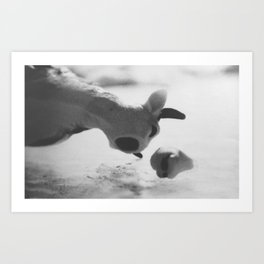 Animal Farm: Udder Despair Part 2 Art Print
