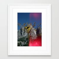 yosemite Framed Art Prints featuring Yosemite by Webe Love