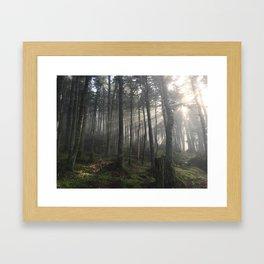 Coopers Cabin Framed Art Print