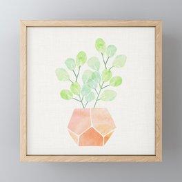 Bonsai Jade Plant Framed Mini Art Print