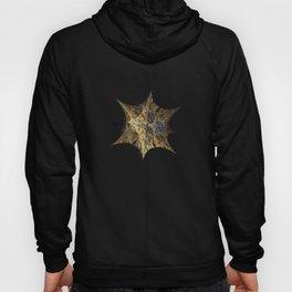 3D Fractal Star Hoody