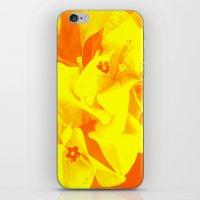 ali gulec iPhone & iPod Skins featuring Ali orange by Keren Shiker