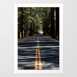 Forest Highway Art Print