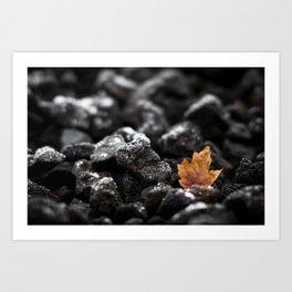 Winter's Flame Art Print