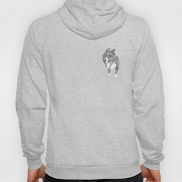 The little dog laughed. Hoody