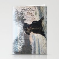 labrador Stationery Cards featuring Black Labrador    by Simon's Photography