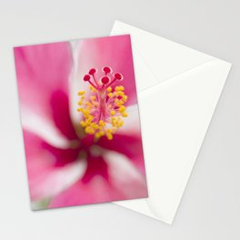 Tropical flower art (Pink hibiscus) Stationery Cards