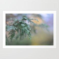 Into the Mist Art Print