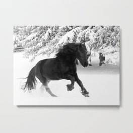 Friesian Mare Galloping in a Snowstorm Metal Print