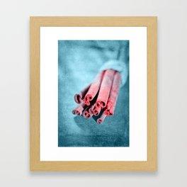 CINNAMON STICKS II Framed Art Print