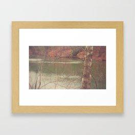 All Your Ducks in a Row Framed Art Print