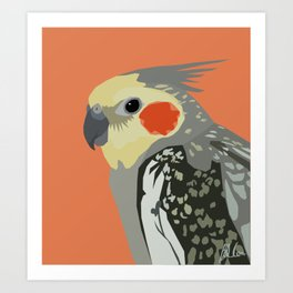 Marcus the cockatiel Art Print