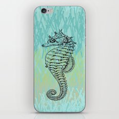 Seahorse ~ The Summer Series iPhone & iPod Skin
