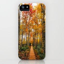 Acadia Autumn iPhone Case