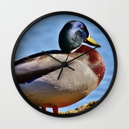 Mallard Wall Clock