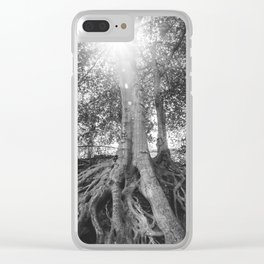 The Root Tree in Greenville, SC Clear iPhone Case