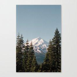 Mt Shasta Morning Canvas Print