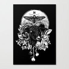 Krogl Canvas Print