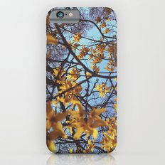 Spring Awakening II iPhone 6s Slim Case