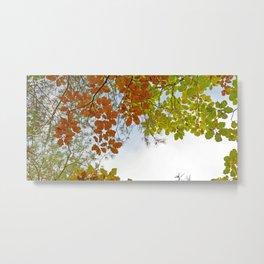 Autumnally sky Metal Print