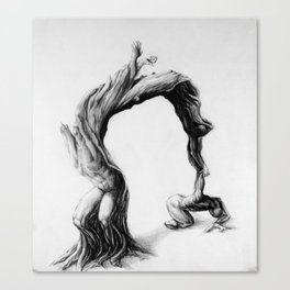 Tree people figure stretching reaching olive tree Canvas Print