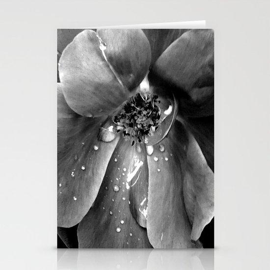 B&W flower Stationery Cards