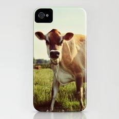 jersey cow Slim Case iPhone (4, 4s)