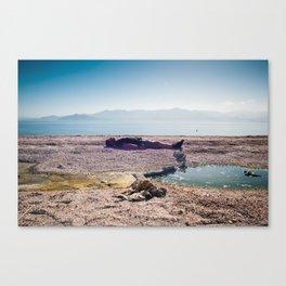 Floating at Salton Sea State Beach Canvas Print