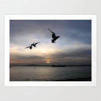 Seagulls in Seattle Art Print