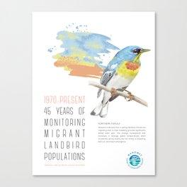 45 Years of Monitoring Landbird Populations  - Northern Parula  Canvas Print
