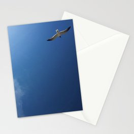 Gull at Shore Stationery Cards