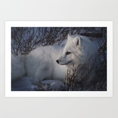 Fox Profile Art Print