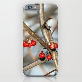 Hawthorne iPhone Case