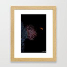 Coral With An Orange Twist Framed Art Print